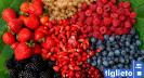 Azienda agricola - agrigelateria Dalpian