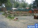 Banilla 2006_2