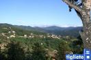 Foto panoramiche