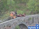 Ponte romanico_12